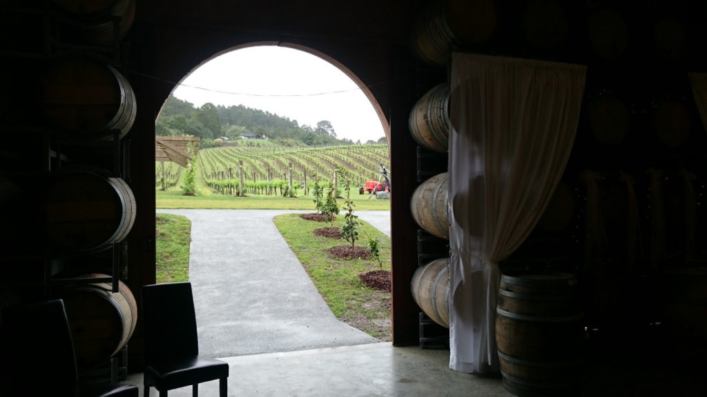 winery-cellar-1
